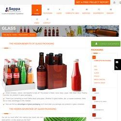 Glass Bottle Cleaner - Seppasolutions