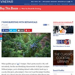 7 Great Bottles Of Gin Bursting With Botanicals