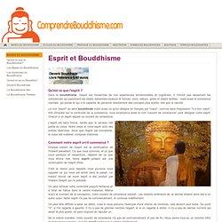 Esprit dans le Bouddhisme - Relation entre l'Esprit & Cerveau
