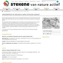 (Her)ontdek de Boudelo-abdij in Klein-Sinaai! - Gemeente Stekene