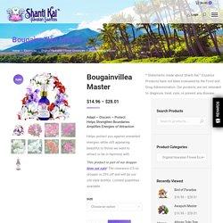 Shanti Kai™ Bougainvillea Flower Essence - Discern and Protect