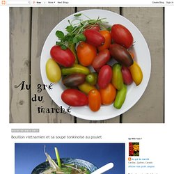 Bouillon vietnamien et sa soupe tonkinoise au poulet