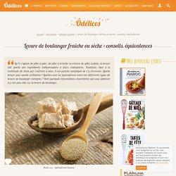Levure de boulanger fraîche ou sèche : conseils, équivalences - Ôdélices