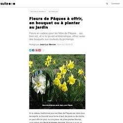 Fleurs de Pâques à offrir, en bouquet ou à planter au jardin