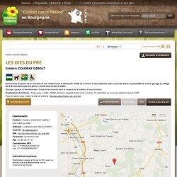 Bourgogne : LES OIES DU PRE - Contact & Plan d'accès - donzy, Nièvre (58
