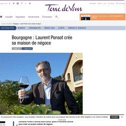 Bourgogne : Laurent Ponsot crée sa maison de négoce - Bourgogne : Laurent Ponsot crée sa maison de négoce