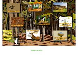 Bourgogne Nature Junior n°3 : La forêt