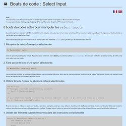 Bouts de code : Select Input