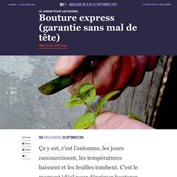 Bouture express (garantie sans mal de tête) - Oui ! Le magazine de la Ruche Qui Dit Oui !