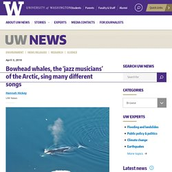 Bowhead whales, the 'jazz musicians' of the Arctic, sing many different songs