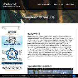 Boxdummy ▷ Training an der Boxpuppe - Megaboxsack