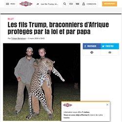 Les fils Trump, braconniers d'Afrique protégés par la loi et par papa