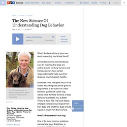 John Bradshaw On The New Science Of Understanding Dog Behavior
