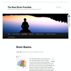 The Best Brain Possible