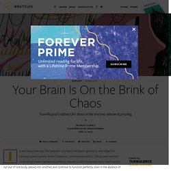 Your Brain Is On the Brink of Chaos - Issue 15: Turbulence