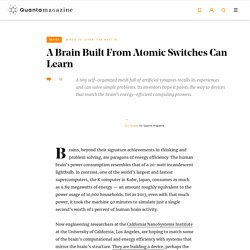 A Brain Built From Atomic Switches Can Learn