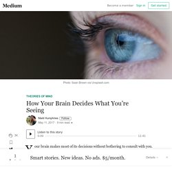 How Your Brain Decides What You're Seeing – Theories of Mind