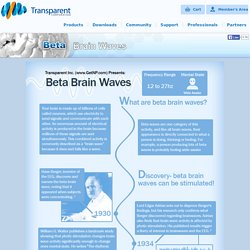 Beta Brain Waves Infographic - Transparent Corp