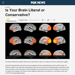Is Your Brain Liberal Or Conservative?