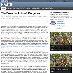 The Brain on Marijuana