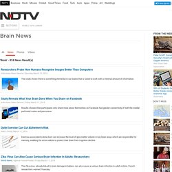 Brain News: Find Latest News on Brain - NDTV.COM