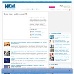 Brain News, Video and Description