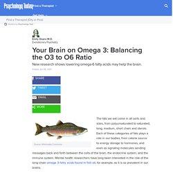 Your Brain on Omega 3: Balancing the O3 to O6 Ratio