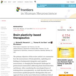 Brain plasticity-based therapeutics