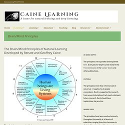 Seeing Learning » Brain/Mind Principles