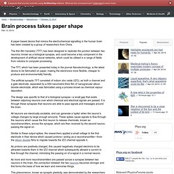 Brain process takes paper shape