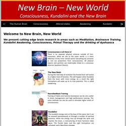 Brain research and consciousness
