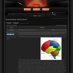 Brain and Brain: What is Brain? : Robert Hampson, Neuroscience