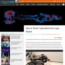 Worm 'Brain' Uploaded Into Lego Robot