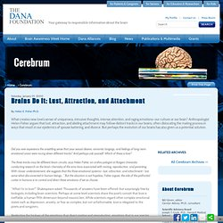 Brains Do It: Lust, Attraction, and Attachment