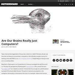 Are Our Brains Really Just Computers?