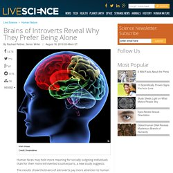 Brains of Introverts Reveal Why They Prefer Being Alone