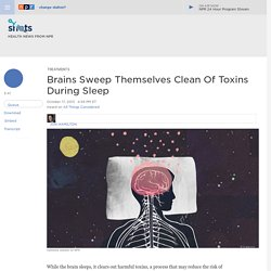 Brains Sweep Themselves Clean Of Toxins During Sleep