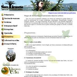Sam'Branche - Formations de grimpe d'arbres, stages d'autonomie.