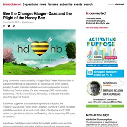 Bee the Change: Häagen-Dazs and the Plight of the Honey Bee
