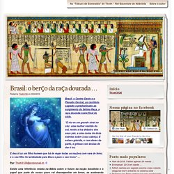 Brasil: o berço da raça dourada …