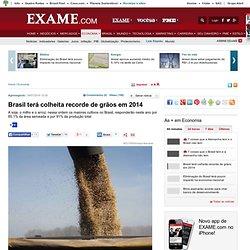 Brasil terá colheita recorde de grãos em 2014