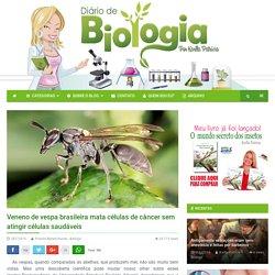 Veneno de vespa brasileira mata células de câncer sem atingir células saudáveis