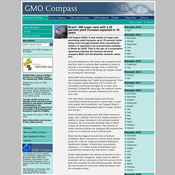 GMO COMPASS 04/08/09 Brazil: GM sugar cane with a 25 percent yield increase expected in 10 years