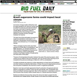 Brazil sugarcane farms could impact local climate