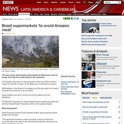 Brazil supermarkets 'to avoid Amazon meat'
