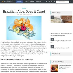 Brazilian Aloe: Does it Cure?