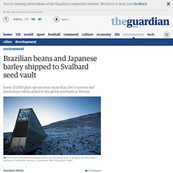 Brazilian beans and Japanese barley shipped to Svalbard seed vault