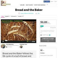 Bread and the Baker
