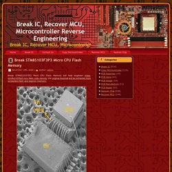 Micro CPU Flash Memory