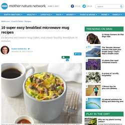 10 super easy breakfast microwave mug recipes